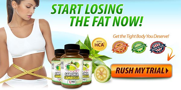 can i buy garcinia cambogia in stores