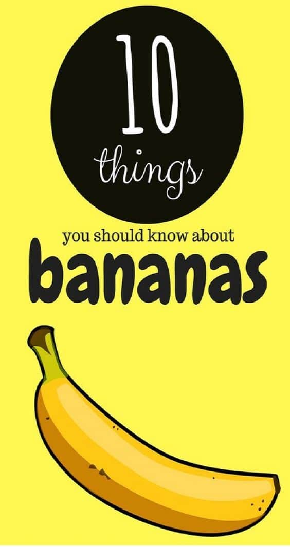 10 Things about Bananas