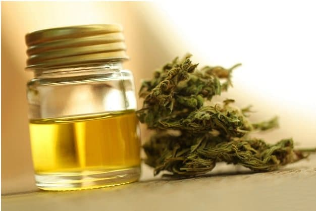 CBD Oil Producer in Osterreich, Austria (1)