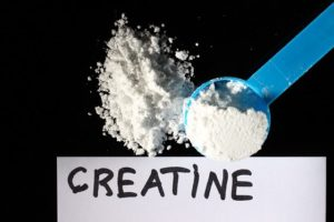 Creatine And Can It Help You Gain Muscle